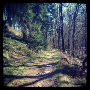 trail_hasper